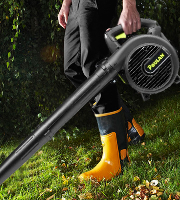 poulan pro leaf blower owners manual