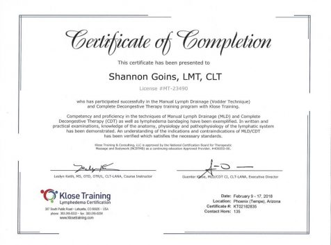 level 2 certified manual therapist